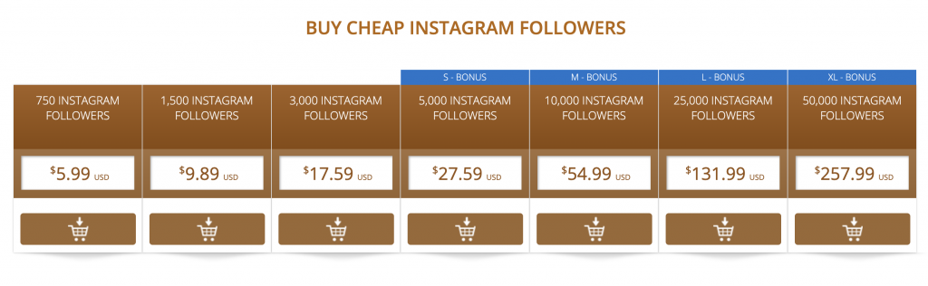 Crash Course on Buying Followers on Instagram
